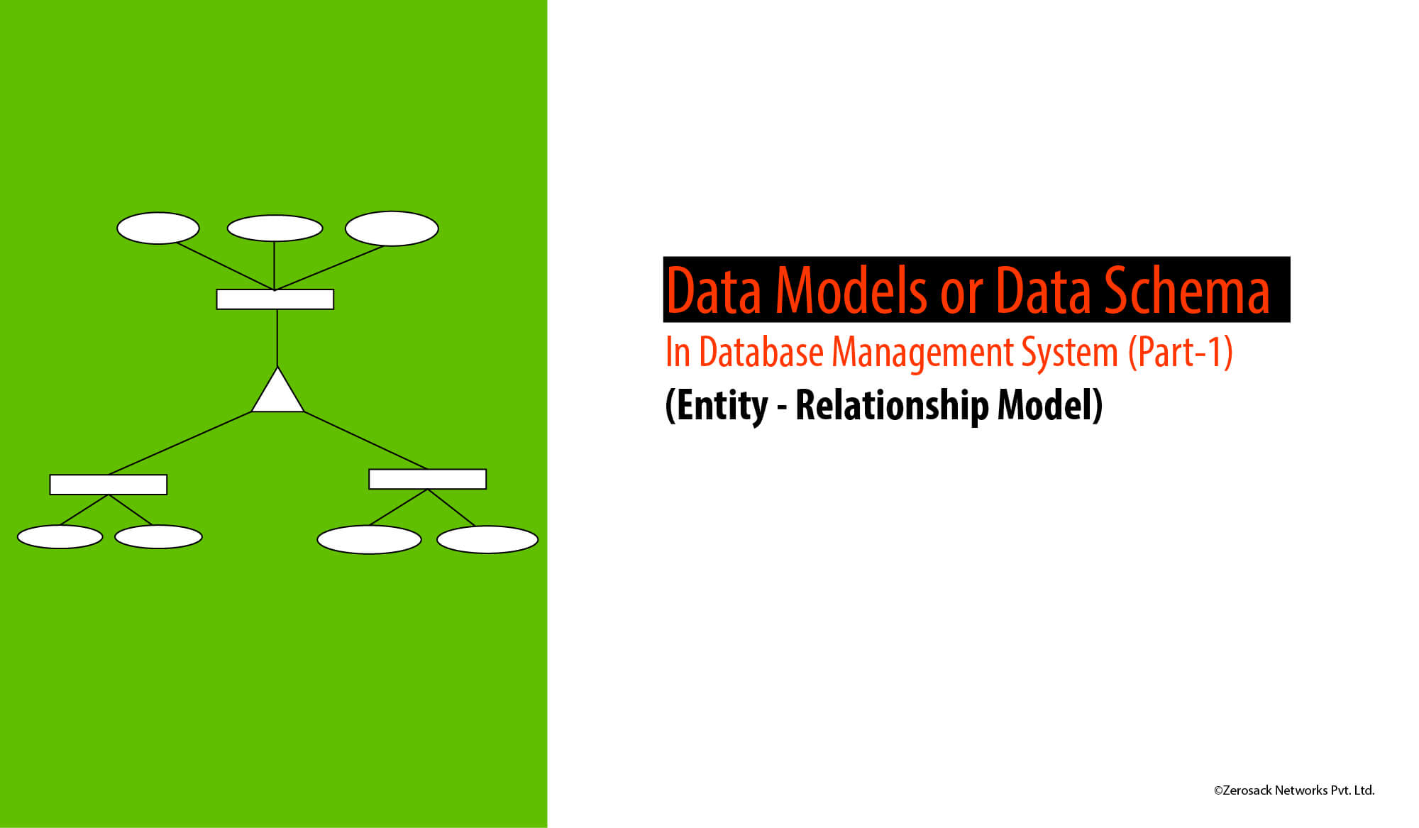 Data-models-in-database-management-system.